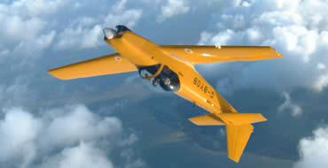 Aerobatics Taster - Fly - Argos Gift Experiences
