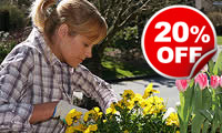 Garden Design Experience with Lunch, Was £99, Now £79