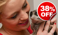 Meerkat Encounter for Two, Was £79, Now £49