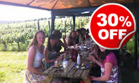Romantic Vineyard Tour with Afternoon Tea or Lunch for Two,  Was £99, Now £69