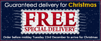 Free Special Delivery to arrive before Christmas
