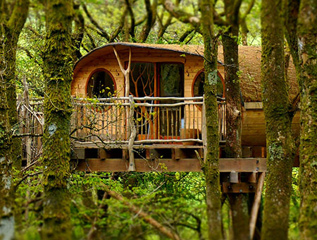 image of Two Night Family Tree House Escape