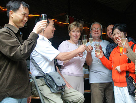 image of Luxury Vineyard Tour with Overnight Stay for Two